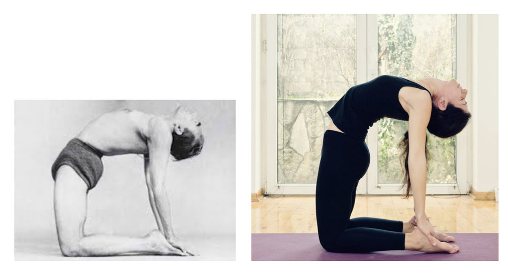 a spineful yoga contrast. BKS Iyengar in Ustrasana and a modern version